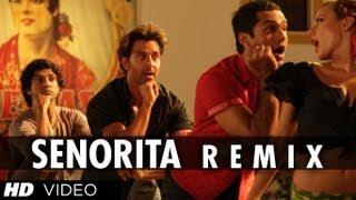 'Senorita Remix (Full video song) 'Zindagi na milegi dobara'