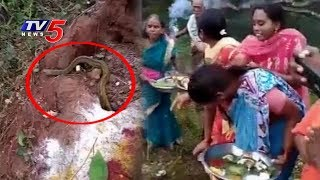 Snake comes out while Women are Praying on Nagula Chavithi..