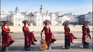 Mariachi Las Adelitas UK - El Toro Relajo
