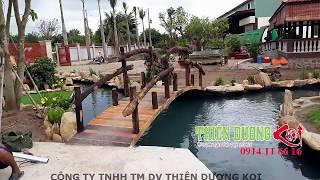 Hồ cá koi ngoài trời tại Tây Ninh 0938 456 786