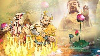 6  Câu Chuyện Phật Giáo Hay Nhất khiến Người Nghe Giật Mình Tỉnh Ngộ | # Mới Nhất