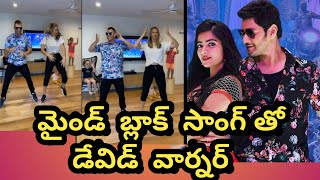 David Warner, his wife dance to Mahesh Babu's famous Mind ..