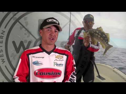 WEST | Calico Bass Fishing