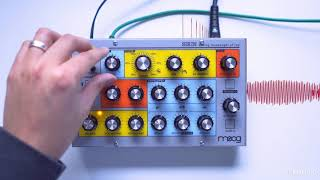 Moog Sirin Review