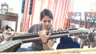 My experiments with the most divine Saraswati veena....