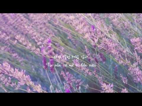 (vietsub) Way Back Home 🌸 SHAUN