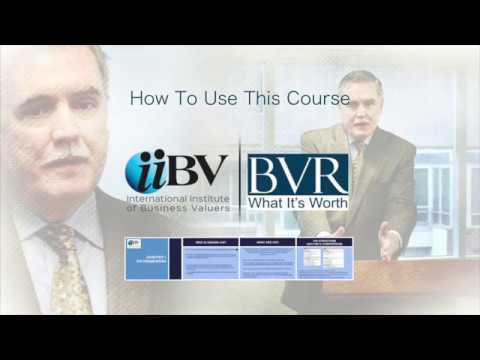 BVR and the iiBV partner on first ever online business valuation standards and ethics course.