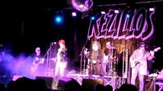 "The Rezillos- ""Live at 229, London - 26 April 2013"" (full show)  
