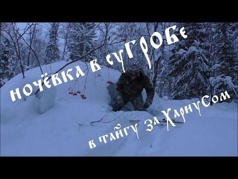 Ночёвка зимой в тайге в суГРОБе !  В тайгу за хариусом .