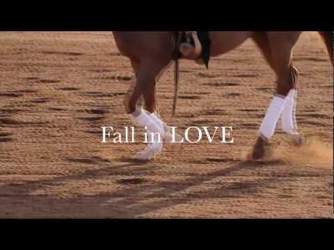 Scottsdale Arabian Horse Show - Starts Feb 14th in Scottsdale, AZ