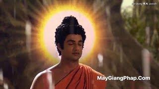 Nghe Mà Thấm Từng Lời - Tình Đạo Phật -Trung Tâm Dần Nguyệt