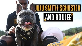JuJu Smith-Schuster and his dog, Boujee, are the NFL's best internet duo | NFL on ESPN