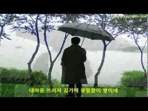 바람꽃 - 비와 외로움