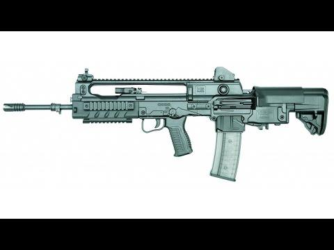 [Payday 2] Lion's Roar Assault Rifle