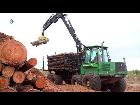 С начала сезона в республике зафиксировано 59 лесных пожаров на площади 581 гектар