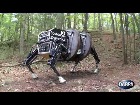 To nie koń, to robot!