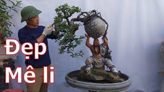 Những tp bonsai đặc biệt được a Đại giới thiệu-BShp(A Đại 0967828345)