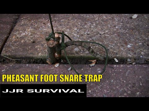 PHEASANT FOOT SNARE TRAP