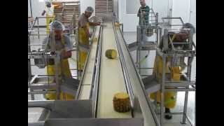 PINEAPPLES PEELING MACHINE