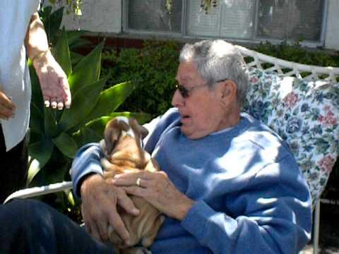 Papa gets a puppy.AVI