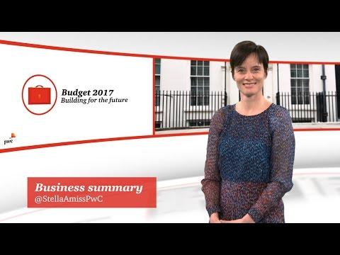 Budget 2017 - Business summary