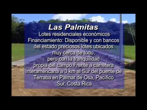 Las Palmitas 2233 7778