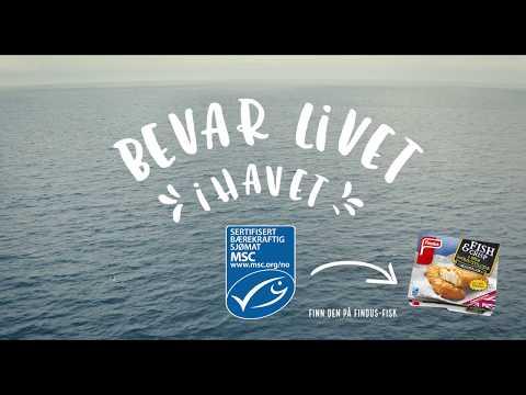 Bærekraftig fisket - MSC og Findus