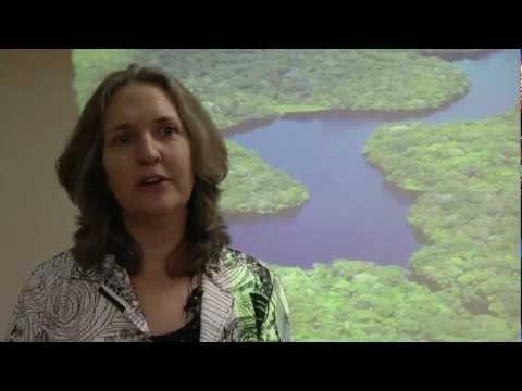 Anne Larson at Rio+20 - Land tenure and REDD+