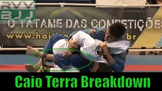 Caio Terra vs Bruno Malfacine Worlds 2008 Back Attack Break Down