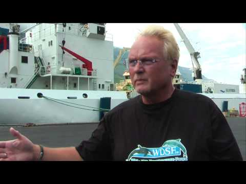 AIDA Anlandungen auf den Färöer Inseln stoppen wegen Delfinmord