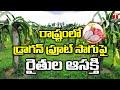 డ్రాగన్ ఫ్రూట్ సాగుపై ఆసక్తి చూపుతున్న రైతులు | Dragon fruit Cultivation In Nagarkurnool | T News