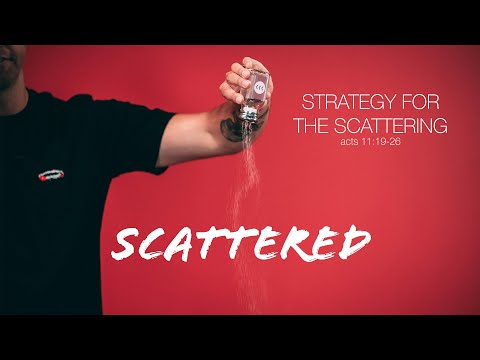 Scattered // Week 3
