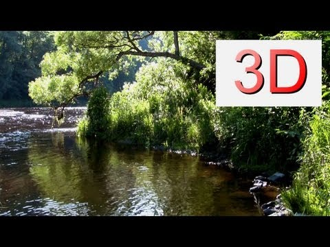 3D Video: River & Forest Relaxation #6