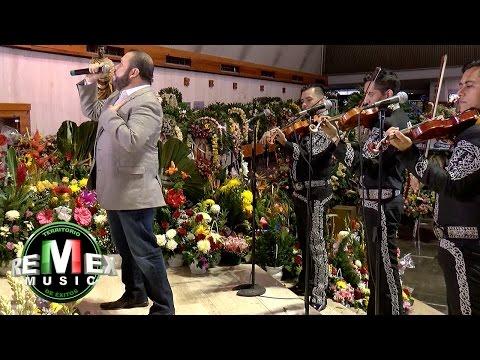 Beto Zapata - Eres mi primer amor (Serenata a la Virgen de Guadalupe)