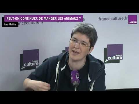 Vidéo de Paul Ariès