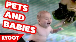 The Funniest Cute Pets and Babies Play Together Home Videos Weekly Compilation | Kyoot Animals