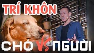 Sự khôn ngoan - Loài chó với loài người | Nguyễn Hữu Trí | TEDxRMIT