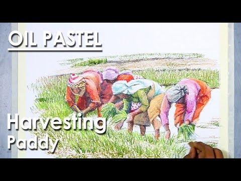 Oil Pastel Drawing : Farmers Harvesting Paddy