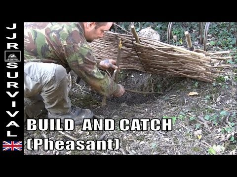 How To Make A Primitive Survival Bird Trap