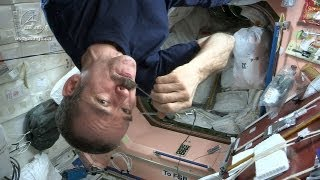 Astronaut Chris Hadfield and Chef David Chang Test Gourmet Space Food