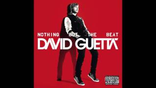 David Guetta - Without You (Audio)