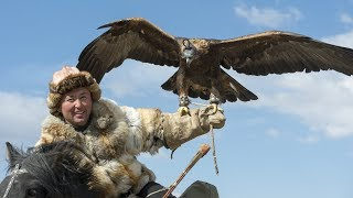 Il dresse un aigle pour chasser à sa place - ZAPPING NOMADE