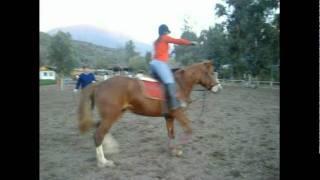 Trotar y cabalgar