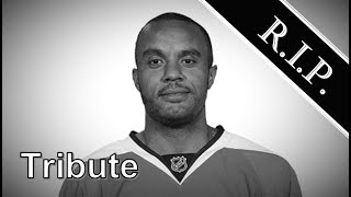Ray Emery ● A Simple Tribute