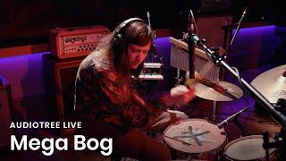 Mega Bog - Diary of a Rose   Audiotree Live