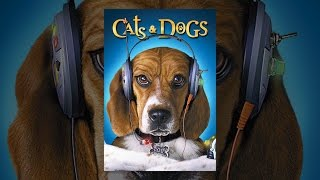 Cats & Dogs - YouTube