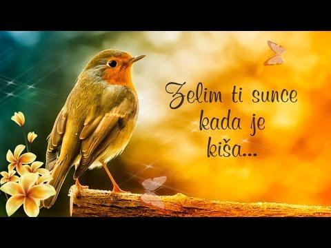 sritan ti rođendan tomislav bralić SRETAN TI ROĐENDAN, PRIJATELJU! | VideoMoviles.com sritan ti rođendan tomislav bralić
