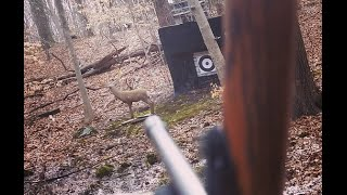 Aiming a Traditional Bow: Gap shooting, fixed crawl and other aiming tips