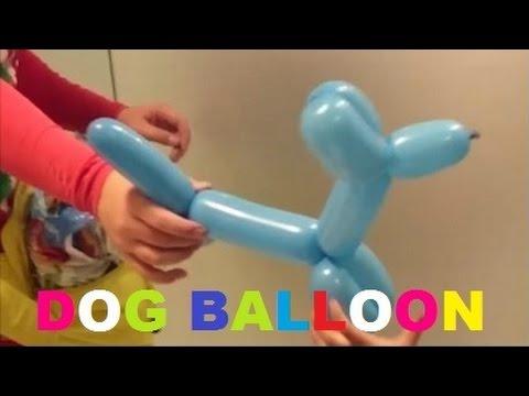 Making Dog from Balloon (Membuat Anjing dari Balon)