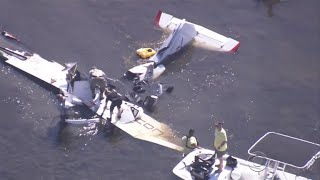 New video emerges of Roy Halladay's fatal flight